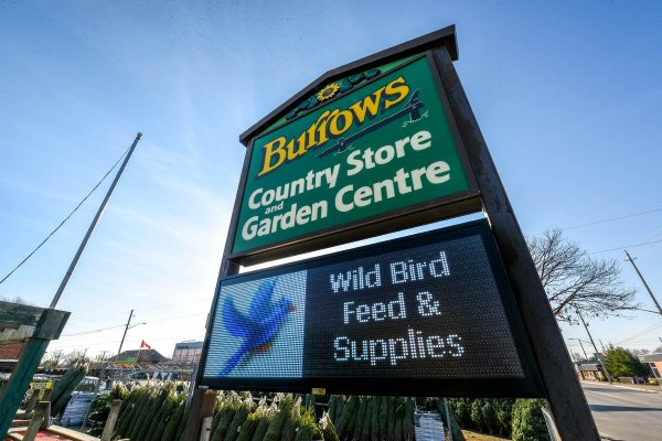 Burrows Country Store & Garden Centre